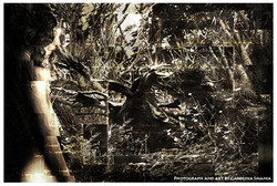 artisticas010.jpg