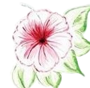 hibiscus_logo_edited.png