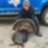 Turkey Hunt 1- 2016.jpg