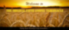 ofgtpage-banner-wheat.jpg