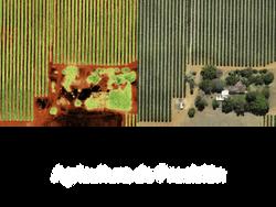 Agricultura Precisión