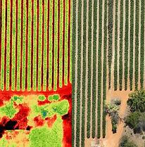 Fotografia aerea de agricultura de precision usando E384