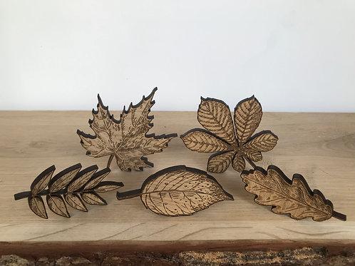 Leaf Collection (Set of 5)