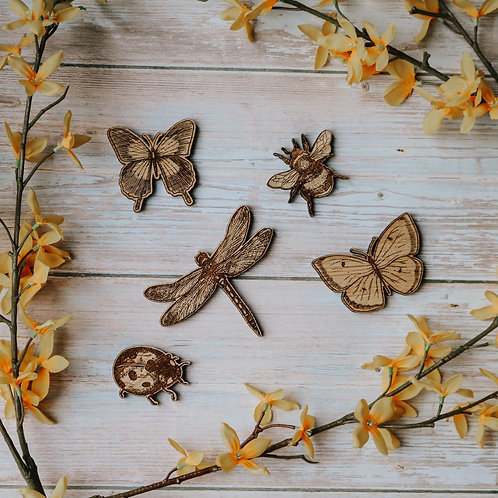 Insect Collection (Set of 5)