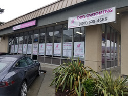 Pet Grooming Salon Union Ave Outside View