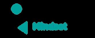 mindsetceo logo color.png