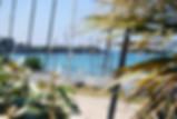 DSC_0911  web.jpg