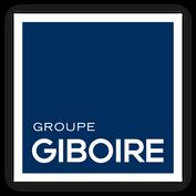 BD - version ombree - LOGO GIBOIRE GROUP