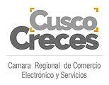 Camara Regional de Comercion Electronico y Servicios - Path Travel Peru