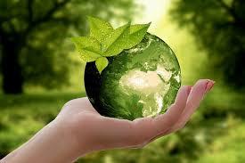 Quanto è sostenibile la tua alimentazione?