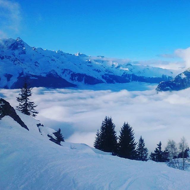 Le clos des Chalmettes-Mer de nuages