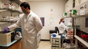 CVI research continues full steam ahead during the pandemic