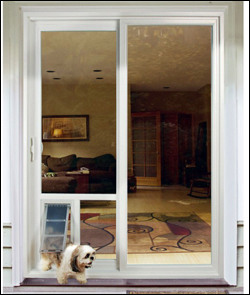 Pet-door-Screen-Door