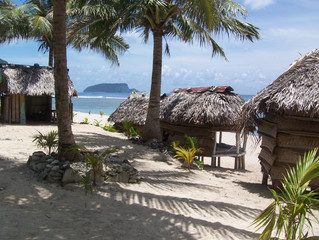Samoa Update December 2010