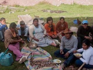 Peru House Project