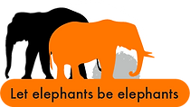 Be Elephant 03@2x.png