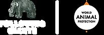 FG l WAP Logo@2x.png