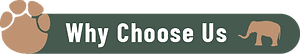 Why Choose Us@2x.png