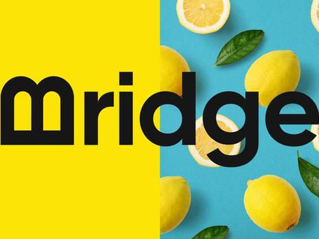 thisisus_bridge_angebot_004.jpg