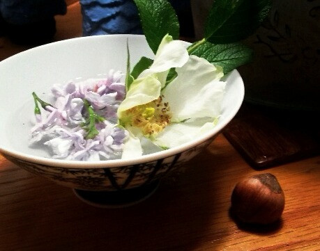 The Alabaster Jar: Herbs and Beauty
