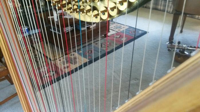 String by String