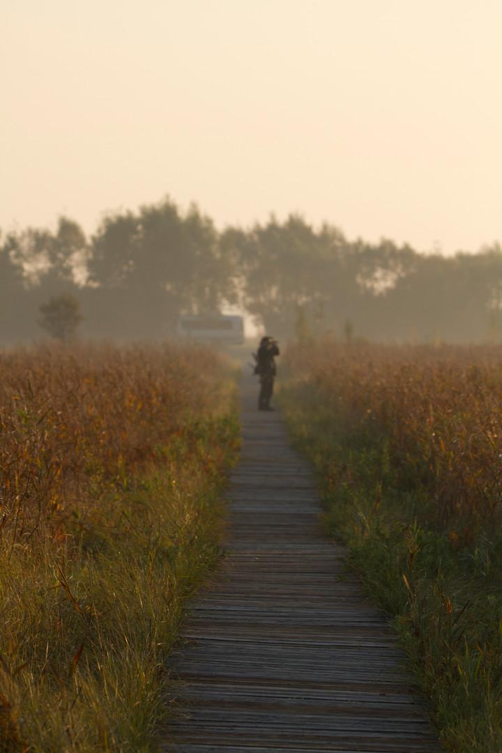 peter in the mist.jpg