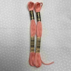 DMC Embroidery Thread 3824