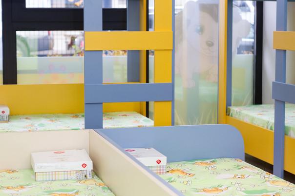 Целодневен детски център Таралежите 31.j