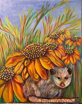 Linda Collura Opossum Portrait