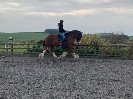 Why is my horse bucking into canter?