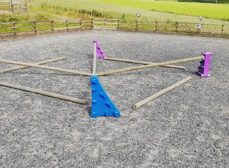 Why is pole work good for horses?