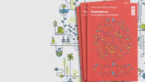 İnsani Gelişme Raporu Türkçe Özeti Yayınlandı