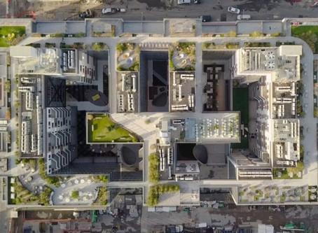 Yeşil Çatı Uygulaması ve New York'dan Yeşil Çatılara Güzel Bir Örnek
