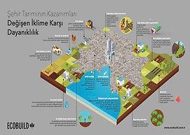 Şehir Tarımı ve İklim Değişikliğine Daya