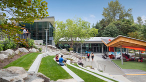 Amerika Okullarını Yeşil Okul Olarak Yenileme Kararı Aldı