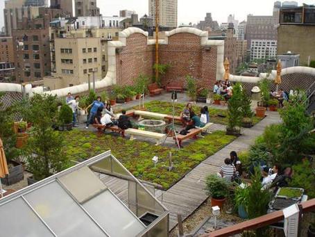 Dünyanın İklim Değişikliğine Dayanıklı İlk 10 Şehri