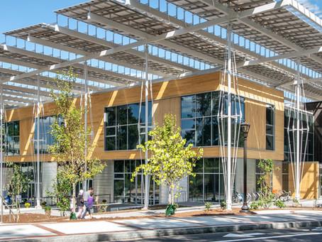 Net Pozitif Sertifikalı Yeşil Binalar Nasıl Projelendiriliyor?