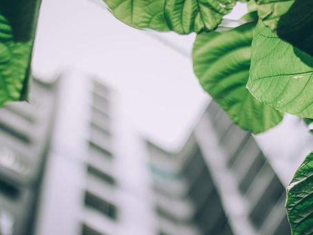 Yeşil Binalar Hakkında Her Şey : 1- Yeşil Bina Nedir? Yeşil Bina Standartları ve Yönetmelikleri Nele