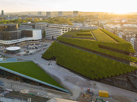 Düsseldorf'un Yeni Yeşil Şehir Merkezi