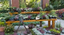 Unsere Ausstellung im Blühenden Barock