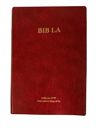 Creole Bible - Vinyl Cover