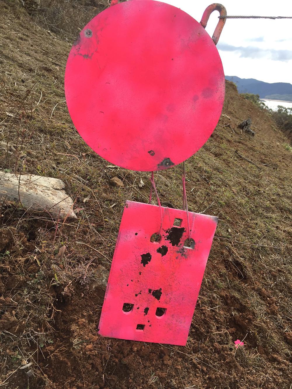 1660m Target at Wee Jasper