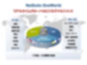 NetSuite ( ネットスイート ) グローバル業務可視化基盤
