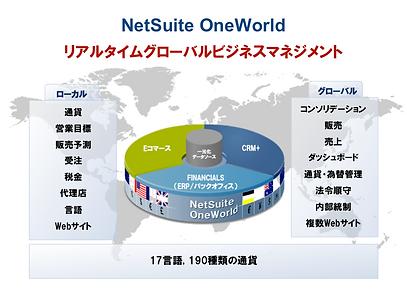 NetSuite ( ネットスイート )の提供するグローバル可視化基盤