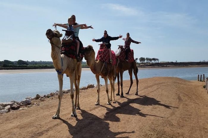 camel-route-blue-waves-morocco-activities
