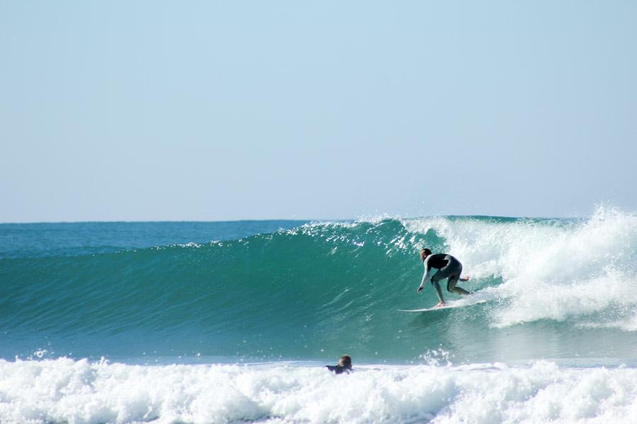 camino surf camp