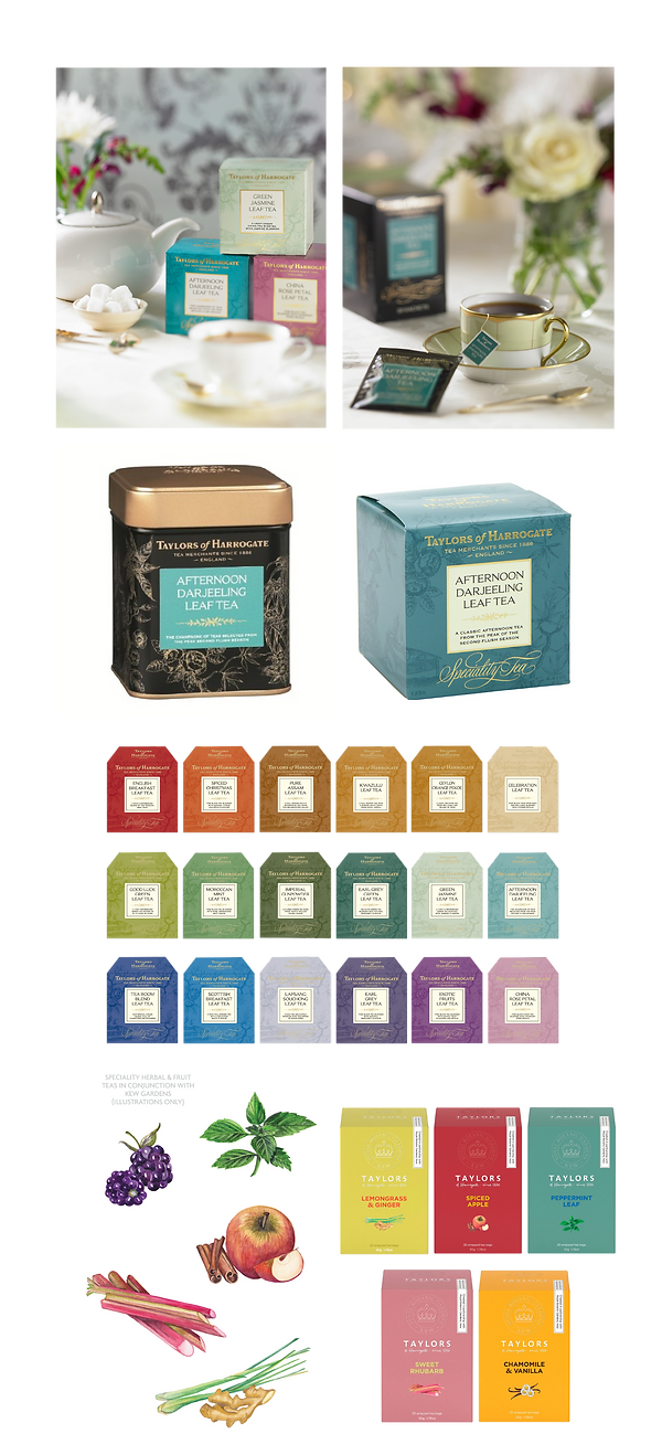 SPECIALITY TEA COMPOSITE-01.png