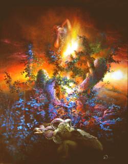 Danse des sorcières le soir du solstice