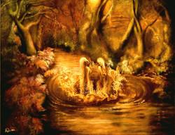 Nature profonde, lumière dorée de la bru