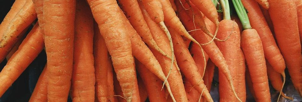 4 Acres Hydroponics Carrots